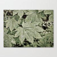 Leaves On The Misty Moun… Canvas Print