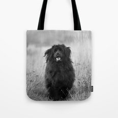 Newfoundland dog Tote Bag