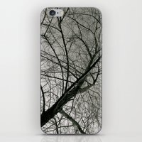 Withered Away iPhone & iPod Skin