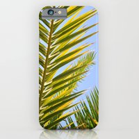 iPhone & iPod Case featuring palm frond by Jaclyn B Photography