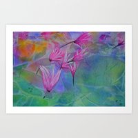 Dew Drop Lily Pad Art Print
