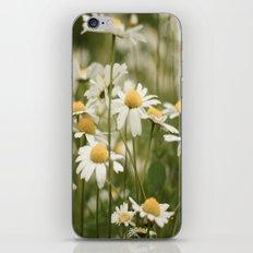 White Flowers iPhone & iPod Skin