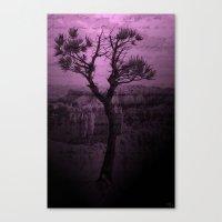 Purple Chasm Canvas Print