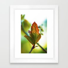 Glowing leaf Framed Art Print