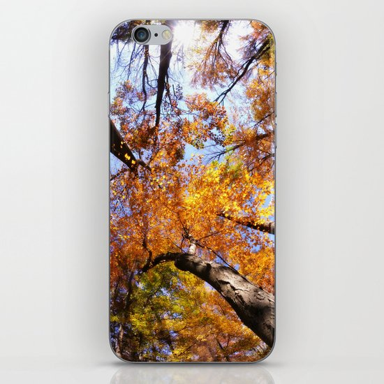 Autumn Sky iPhone & iPod Skin