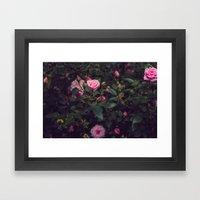 Sweet Summertime III Framed Art Print