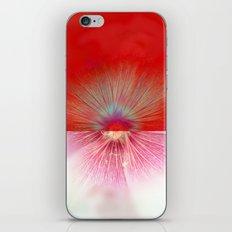 insideout iPhone & iPod Skin