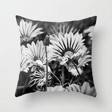 Desert Daisies (bnw) - Daisy Project in memory of Mackenzie Throw Pillow