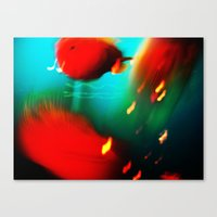 fishes fishes...:) Canvas Print