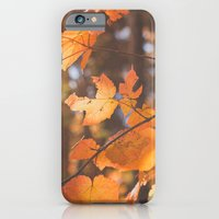 Red Autumn Leaves iPhone 6 Slim Case