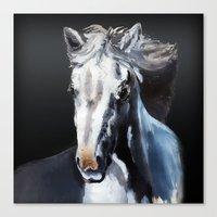 Horse Ghost Canvas Print