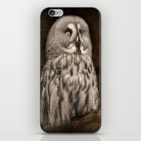 Bartkauz  iPhone & iPod Skin