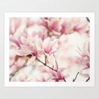 Japanese Magnolia II Art Print