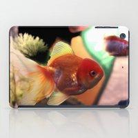 Freshwater Gold Fish iPad Case
