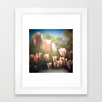 Dreamy Pink Tulips Framed Art Print