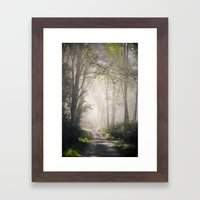doe bay | 2011. Framed Art Print