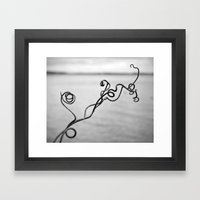 Curly Vine Growing By Th… Framed Art Print