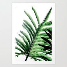 Leaves 2 Art Print