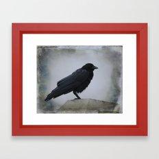 Wet Crow Framed Art Print