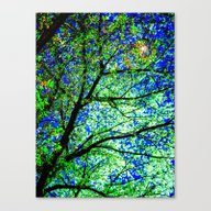 Green Leaves Night Sky Canvas Print