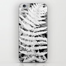Walking In The Woods iPhone & iPod Skin