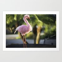 PG Flamingo Art Print