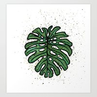 Monstera Deliciosa Art Print