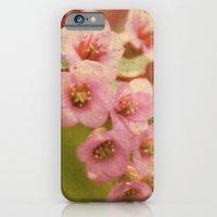 Little Belles iPhone 6 Slim Case
