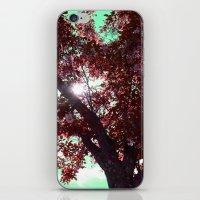 Rubis iPhone & iPod Skin