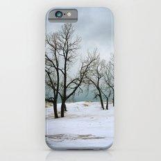 Winter Trees iPhone 6 Slim Case