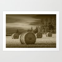Sepia Toned Harvest Field with Hay Bales at Sunset on Prince Edward Island in Canada Art Print