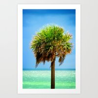 Stately Palm Art Print