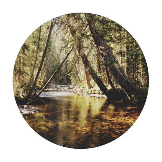 East Inlet Creek Art Print