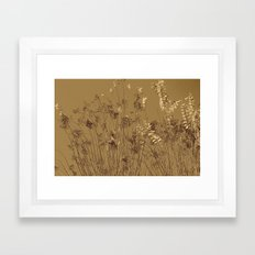 Thin Branches Sepia Framed Art Print