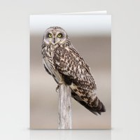 Short Eared Owl Stationery Cards