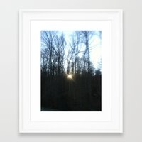 Southern Forest Sunset Framed Art Print
