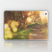 Oak Trail Laptop & iPad Skin