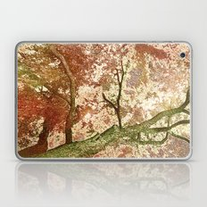 Majestic Tree Laptop & iPad Skin