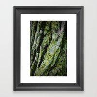 moss, bark Framed Art Print