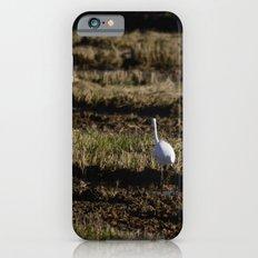 Egret Slim Case iPhone 6s