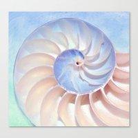 Nautilus Shell Spirals Canvas Print