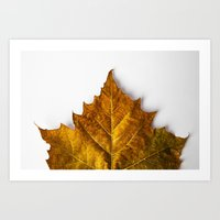Autumn Leaf - Yellow Art Print