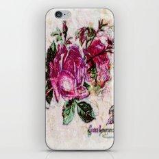 Poster Rose2 iPhone & iPod Skin