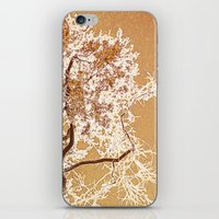 Golden Sky iPhone & iPod Skin