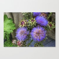 Purple Blooms Canvas Print