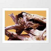 Driftwood Bird Feeder Art Print