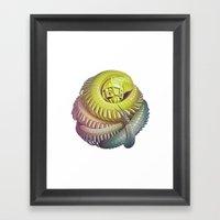 Killipede Framed Art Print
