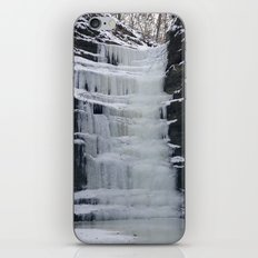 Frozen iPhone & iPod Skin