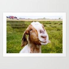 The Smiling Goat Art Print