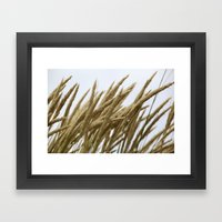 Wheat Framed Art Print